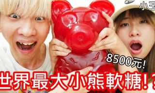 【小玉】一隻8500!小玉要挑戰世界最大的小熊軟糖!?