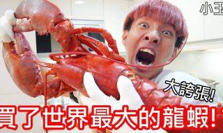 【小玉】世上最大的龍蝦(65cm)吃起來是甚麼滋味呢?
