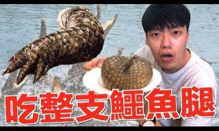 【JAM 狠愛演】嘗鮮!試吃重達2公斤的鱷魚腿!