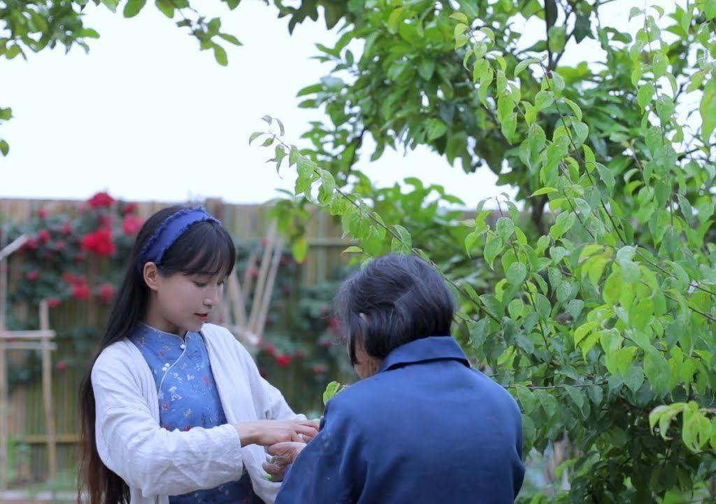 【李子柒 Liziqi】夏天到了!一起摘下新鮮青梅製作清爽料理吧!