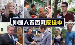 【老外看中國、老外看台灣】外國民眾也關注香港反送中嗎?其實很多人並不知道這次事件?