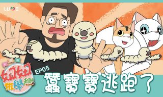 【 NyoNyoTV妞妞TV】玩具開箱頻道自製高品質動畫 網友直呼「好好看!」