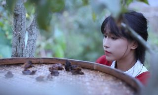 【李子柒 Liziqi】窺探傳統中華料理最重要的調味料「辣椒」的一生