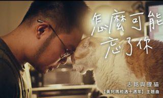 【黃阿瑪的後宮生活】黃阿瑪相遇十週年主題曲 MV情感細膩感動萬人
