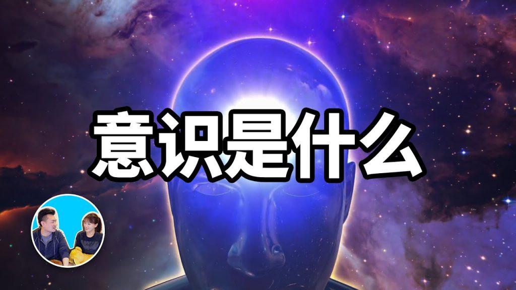 【老高與小茉 Mr & Mrs Gao】人類思考的終極難題:意識的存在