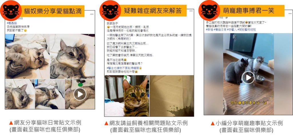 貓咪熱門頻道貼文示例:日常分享、請益文