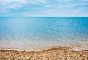 網路新聲量》從無人知曉到無人不知 看藻礁公投聲量翻倍之路