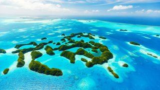 可以組團出國了? 從帛琉旅遊泡泡討論聲量看網路輿情