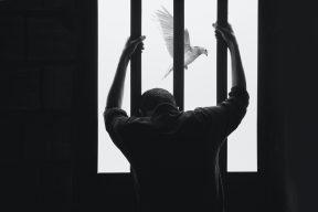 罵「舔美賣台」逆時中遭判拘役,言論自由是否受限引熱議  PTT熱門事件