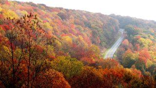 秋季旅遊指南,跟著網友一起出發