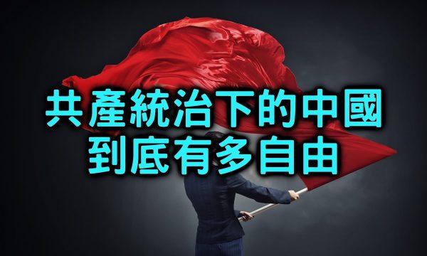【Jarrow Show蒟蒻真人秀】中國人與臺灣人的思想和自由度差異為何?