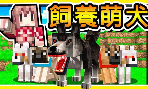 【阿神】用Minecraft創造狗狗大軍!完成「拯救流浪狗」感人故事